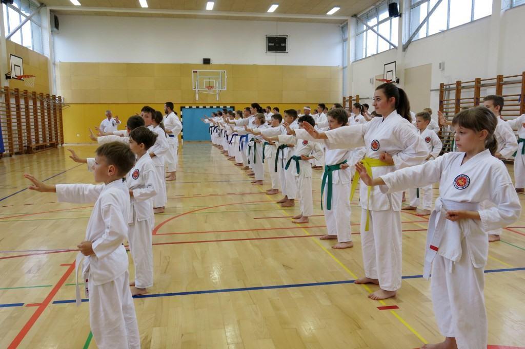 18. tradicionalni Karate–Do seminar